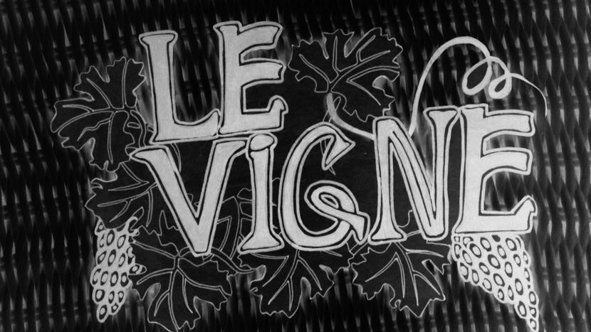 Image from le Vigne