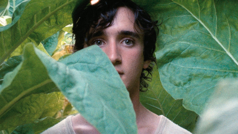 Image from International Women's Day Preview: Happy as Lazzaro
