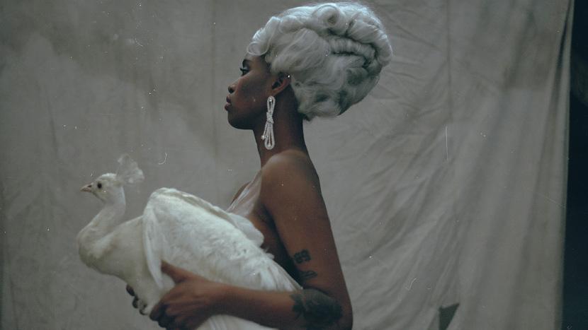 Image from Diva, Dir Adam Csoka Keller