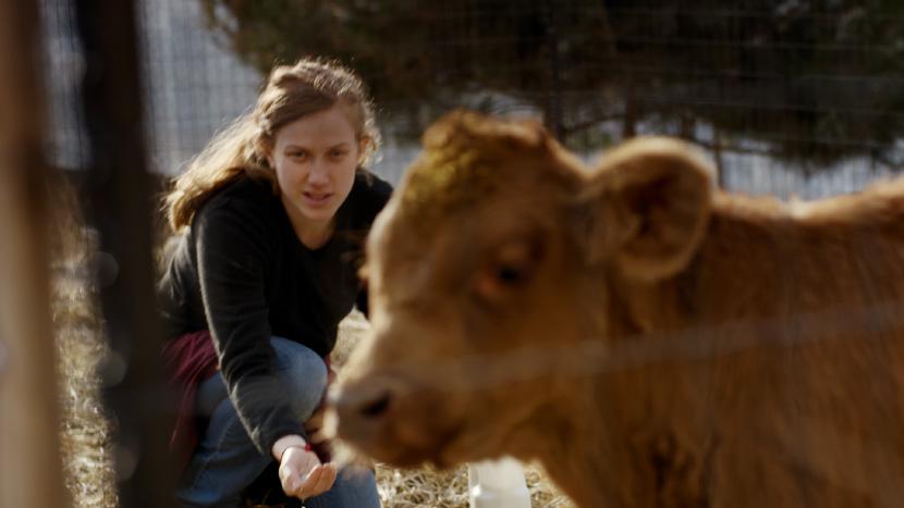Image from Red Cow Dir-Scr Tsivia Barkai
