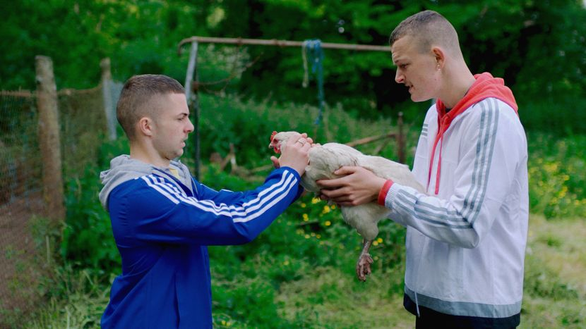 Image from The Young Offenders