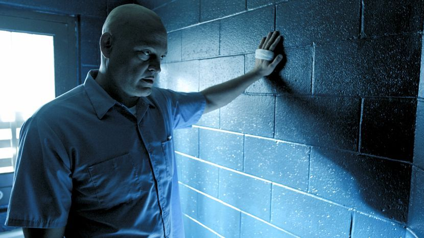 Image from Brawl in Cell Block 99