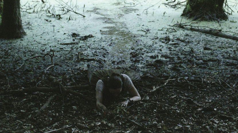 Image from Hagazussa - A Heathen's Curse