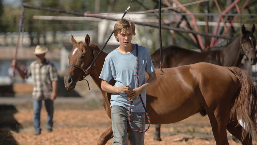 Image from Lean on Pete