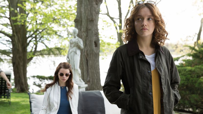Image from Thoroughbreds