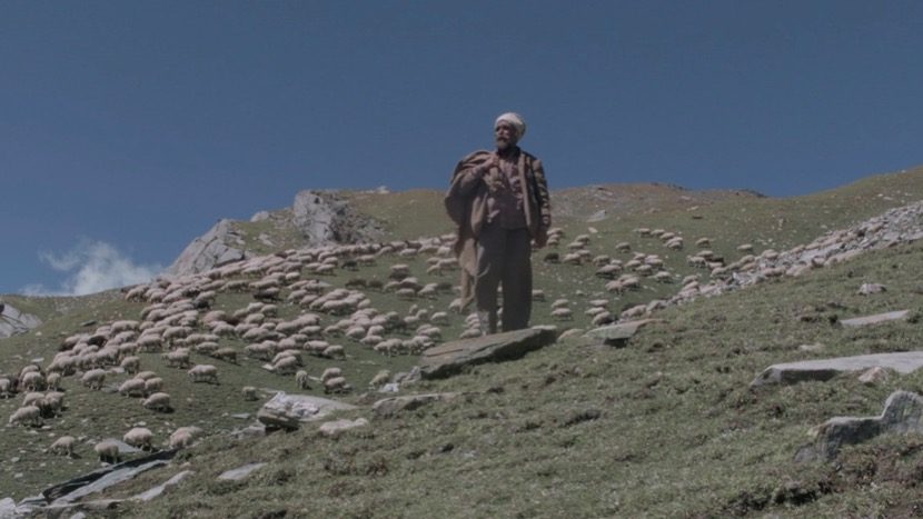 Image from The Gold-Laden Sheep & the Sacred Mountain Dir Ridham Janve